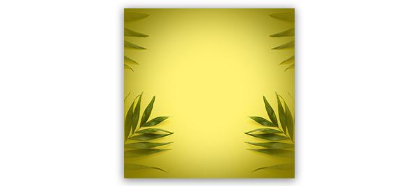 Картинка желтый фон для инстаграма