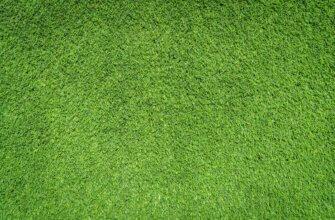 Фотография бесшовная текстура травы зелёного цвета на лужайке