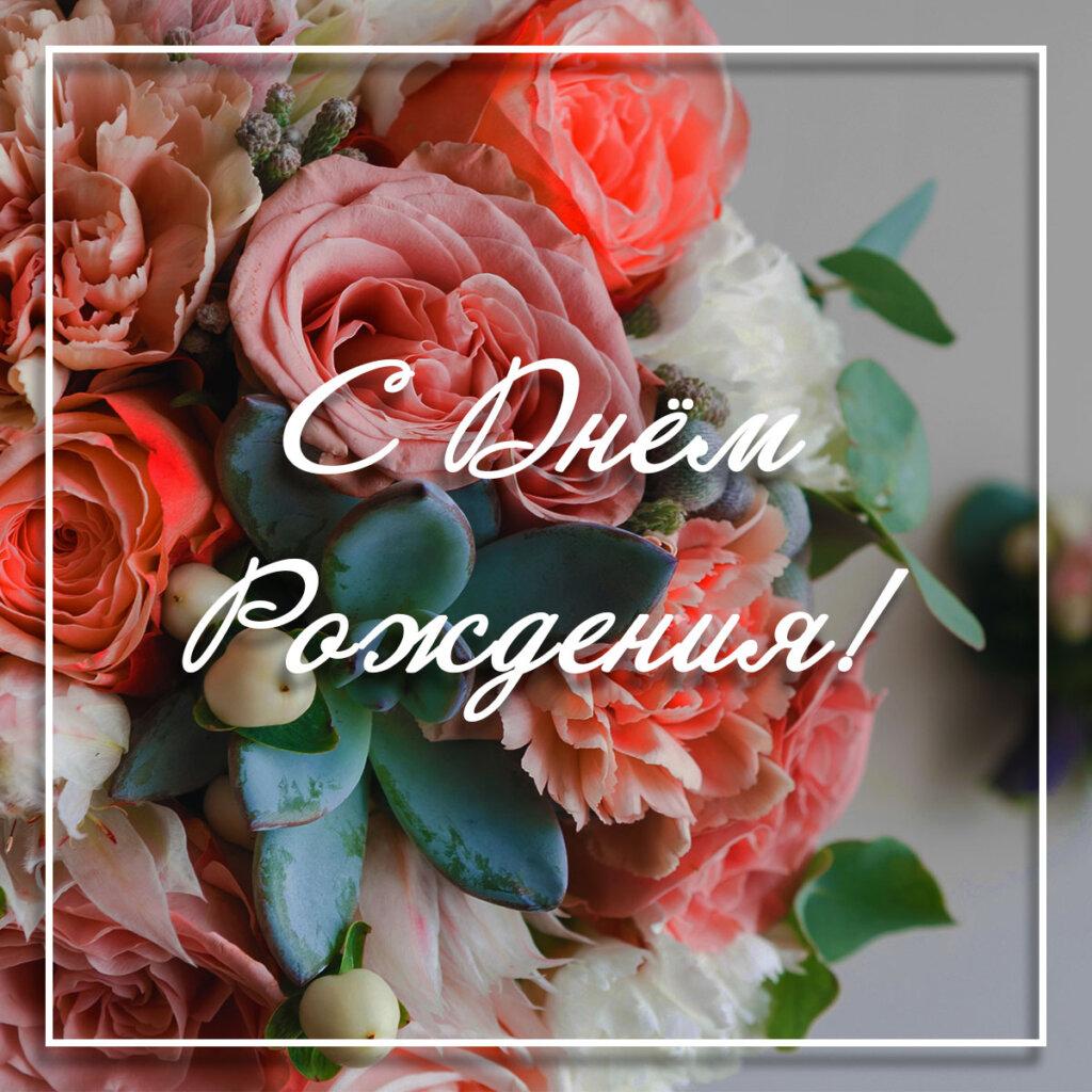 Фото открытка цветы с днем рождения: садовые розы и зелёные листья растений