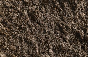 Фотография коричневая текстура почвы с камнями на вспаханном поле