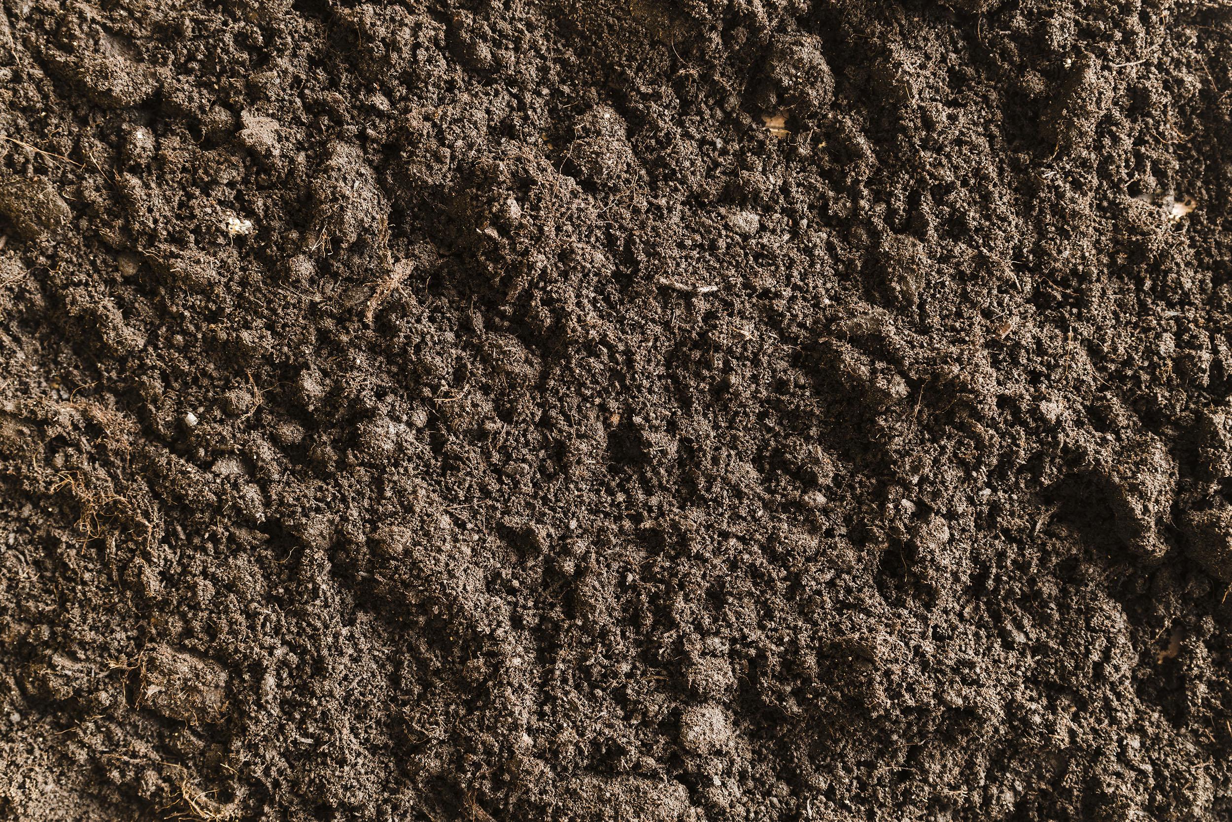 Фотография коричневой разрыхленной почвы с камнями.