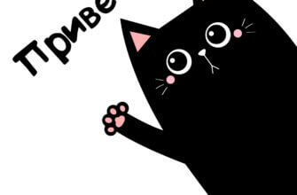Черный кот и надпись привет как дела на белом фоне.