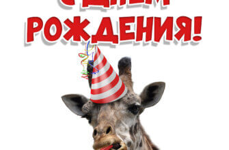 Фото с днем рождения с мордой жирафа в шляпе для вечеринок и поздравительной надписью.