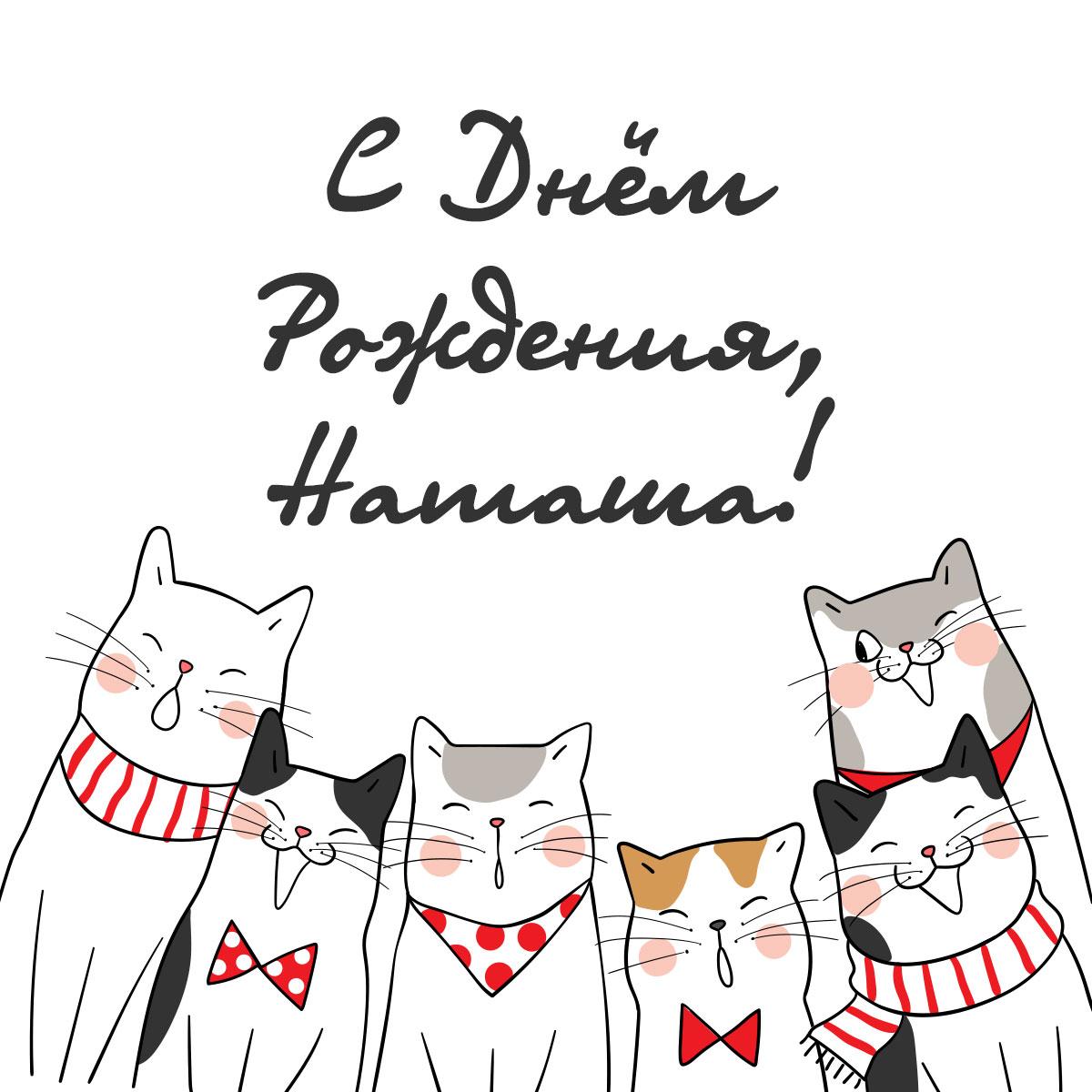 Картинка с текстом на поздравительную открытку с днем рождения наташа с весёлыми котами.