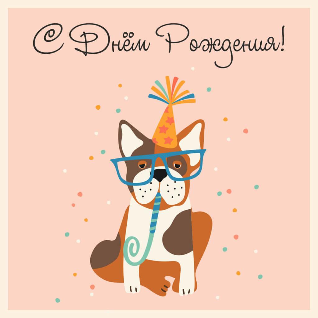 Картинка - открытка на день рождения прикольная с собакой в очках и праздничной шляпе на персиковом фоне.