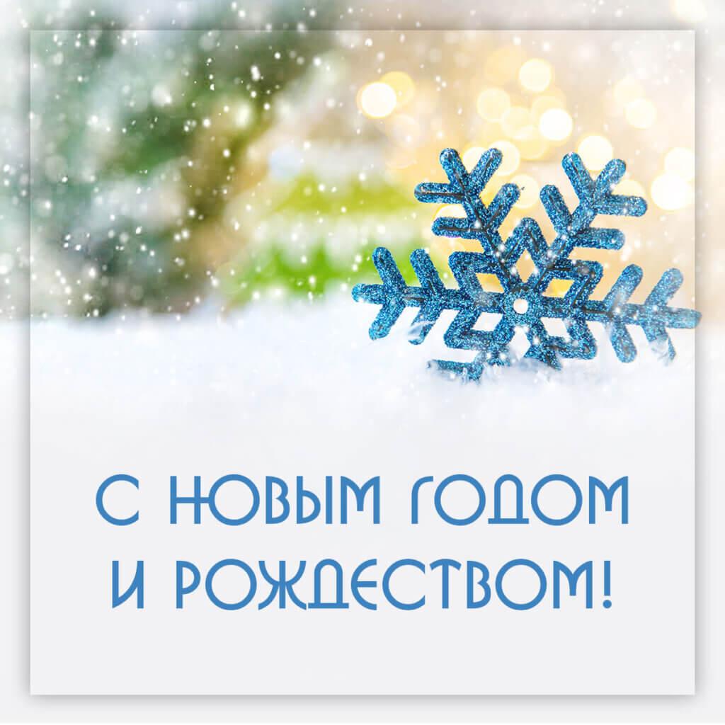 Картинка новый год зима и снежинки с поздравительным текстом.