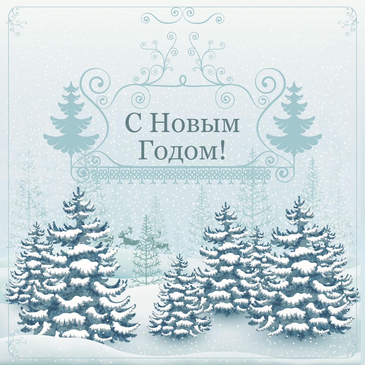 Монохромная картинка с ёлками в зимнем лесу в ретро стиле.