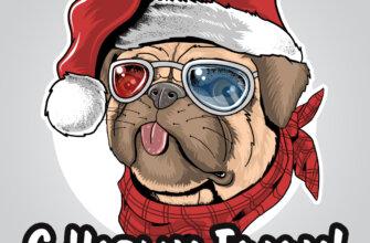 Картинка с собакой в солнечных очках и шапке санта клауса на прикольные открытки с поздравлением нового года.