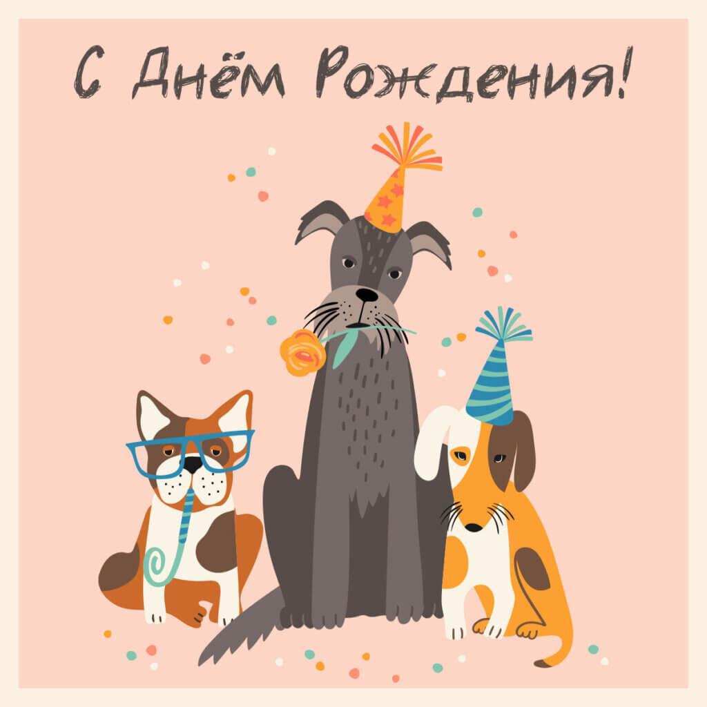 Картинка с надписью - прикольная открытка с днем рождения подруге с тремя собаками в праздничных шляпах.