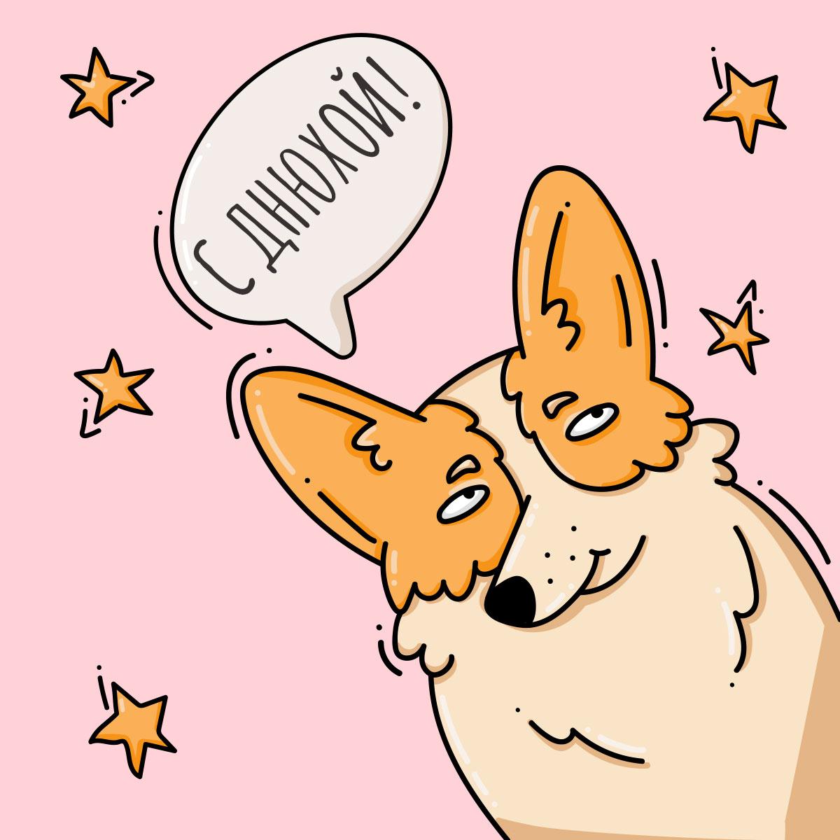 Розовая картинка с довольной мордой рыжей собаки корги.