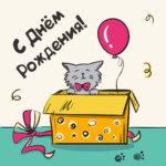 Прикольный рисунок кот в коробке.