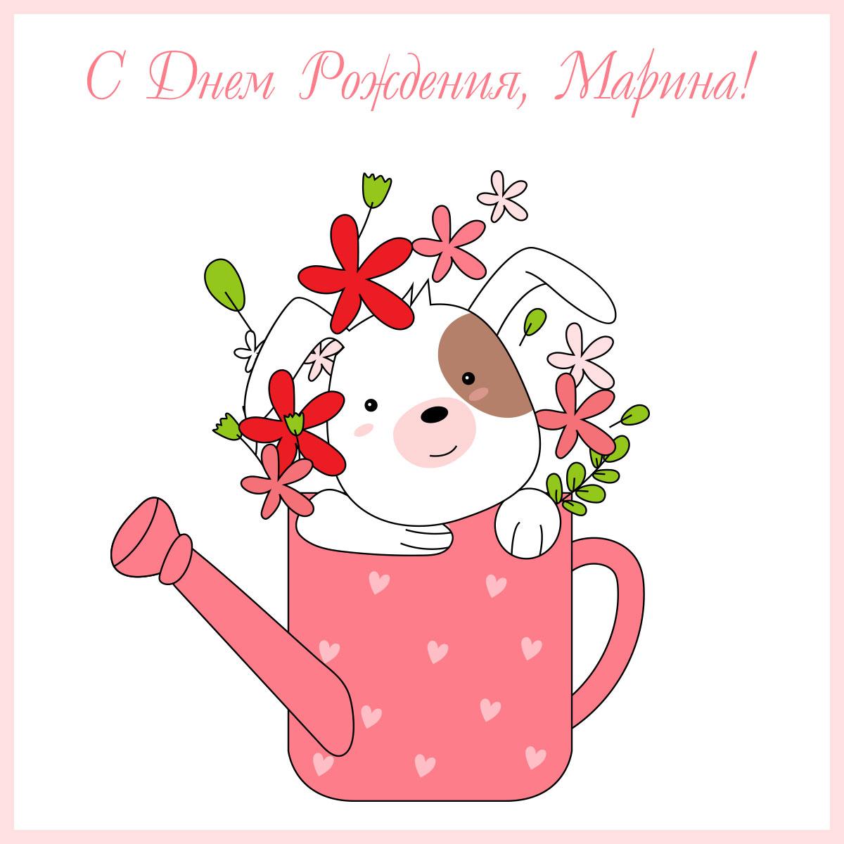 Картинка с поздравительной надписью - открытка день рождения марина с рисунком щенка с цветами в розовой садовой лейке.