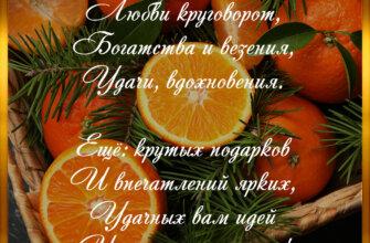 Новогоднее поздравление на фоне апельсинов и еловых веток.