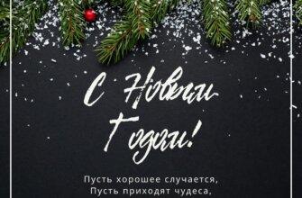 Поздравление с новым годом на чёрном фоне с еловыми ветками.
