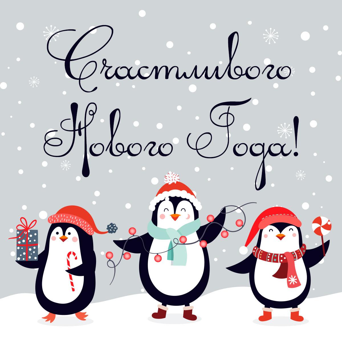 Картинка с тремя весёлыми пингвинами в шапках санта клауса.