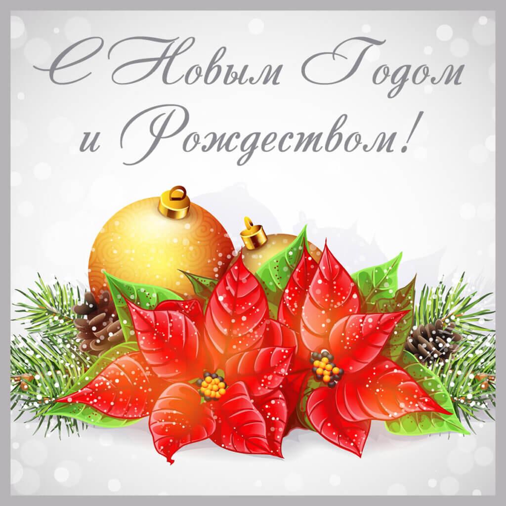 Картинка с надписью - виртуальная новогодняя открытка с жёлтыми рождественскими шарами, красными цветами и еловыми ветками.