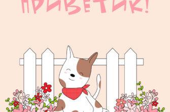 Картинка с текстом для открытки приветик с рисунком щенка на фоне забора и цветов.