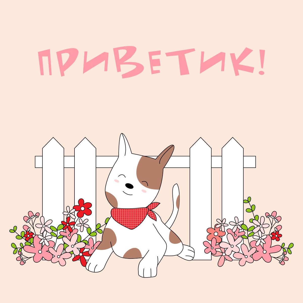 Надпись приветик и щенок на фоне забора и цветов.