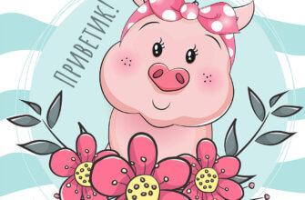 Картинка приветик с мультипликационной розовой свинкой и цветами на нежно - голубом фоне с надписью.