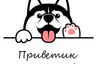 Картинка приветик от меня с мордой мультипликационной собаки и чёрным текстом на белом фоне.