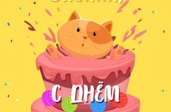 Кот внутри розового торта на жёлтом фоне.