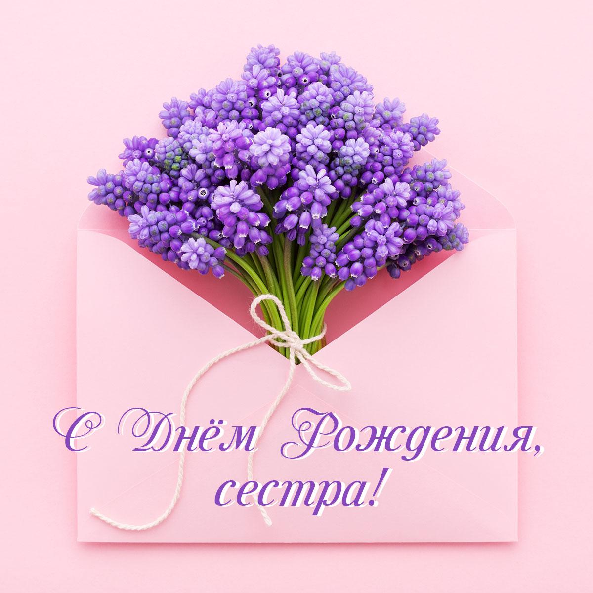 Картинка с текстом для открытки с днем рождения сестры: букет цветов сирени фиолетового цвета на зелёных стеблях внутри открытого розового почтового конверта.