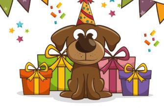 Картинка с текстом - открытка с днем рождения Сергей с рисунком собаки в шляпе для вечеринок на фоне коробок с подарками.