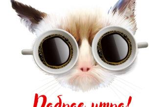 Картинка с текстом для открытки с добрым утром с кошачьей мордой в очках из двух чашек чёрного кофе.