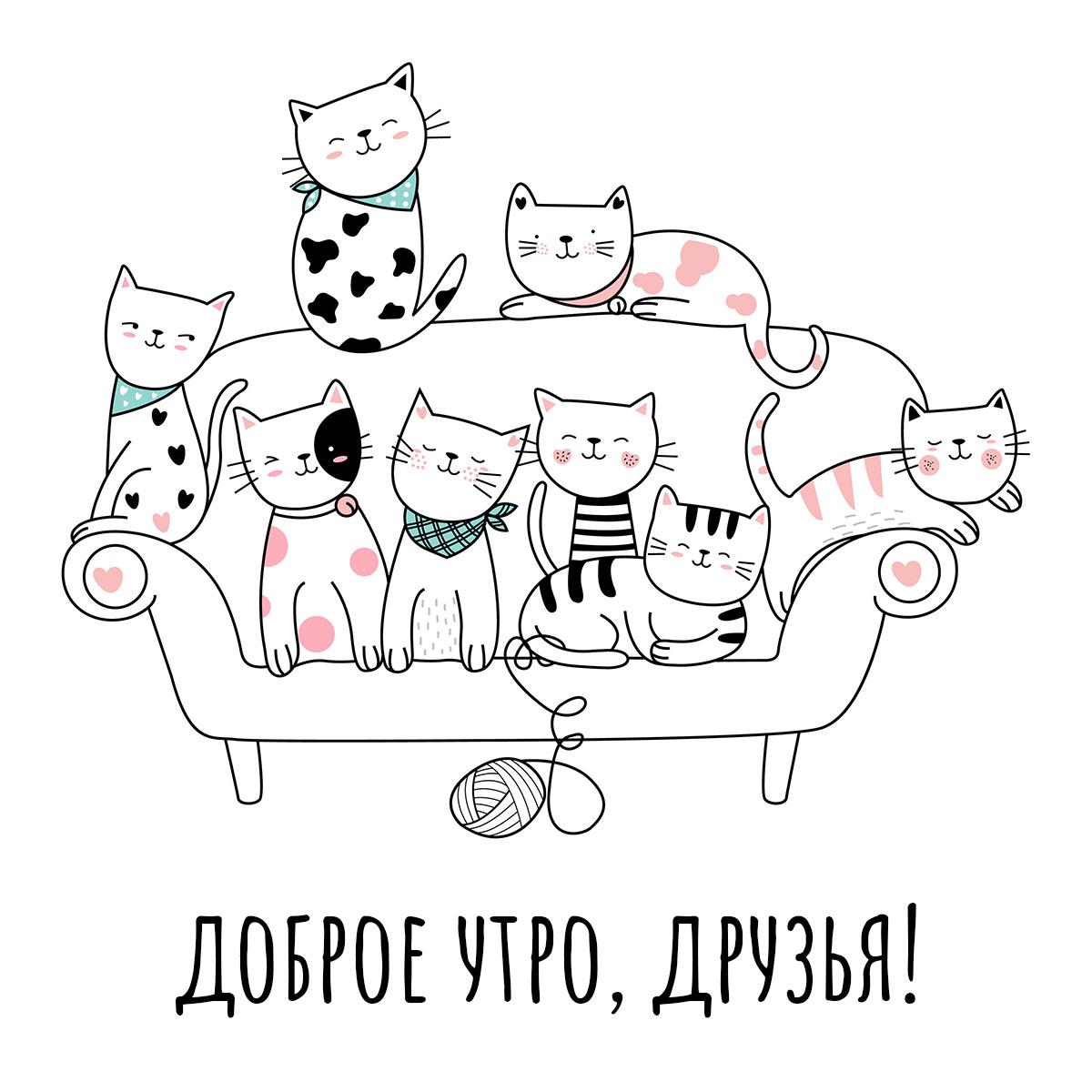 Коты на диване и приветствие доброе утро друзья!