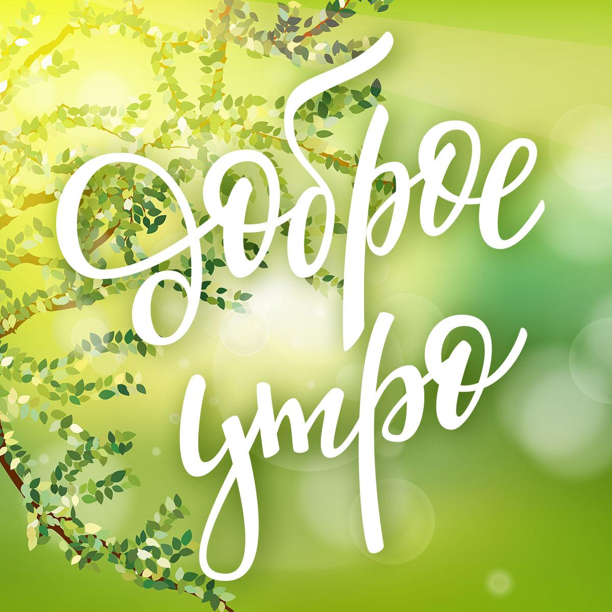 Картинка с каллиграфической надписью летнее доброе утро на зелёном фоне с ветками и листьями дерева.
