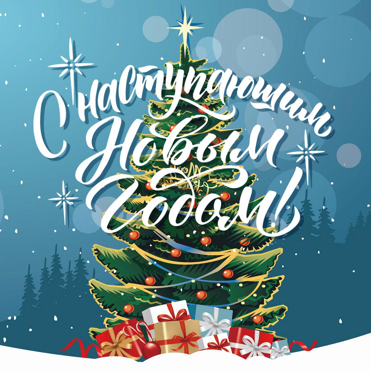 Картинка рождественской ёлки и подарков на новый год на фоне ночного неба и зимнего леса с каллиграфическим шрифтом.