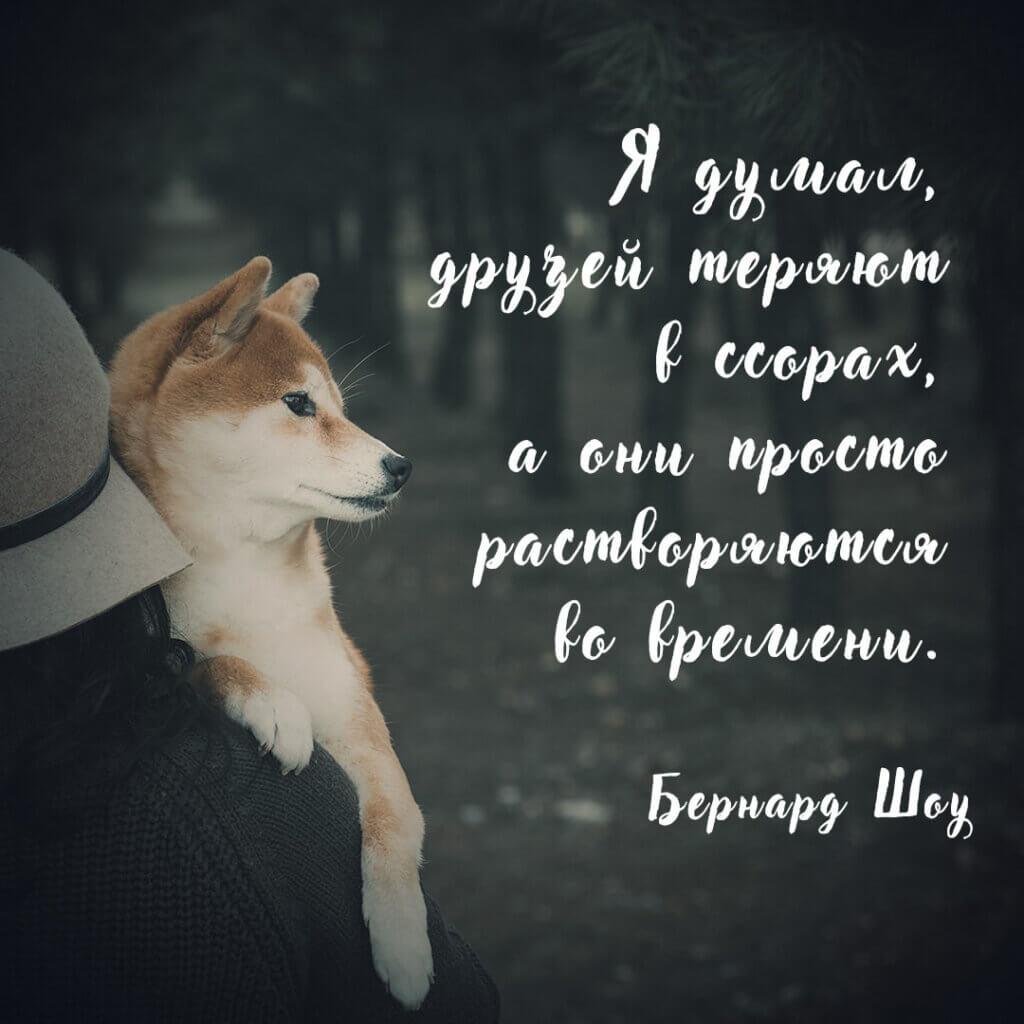 Фотография с текстом цитаты Бернарда шоу на фоне человека в шляпе, держащего на руках собаку.