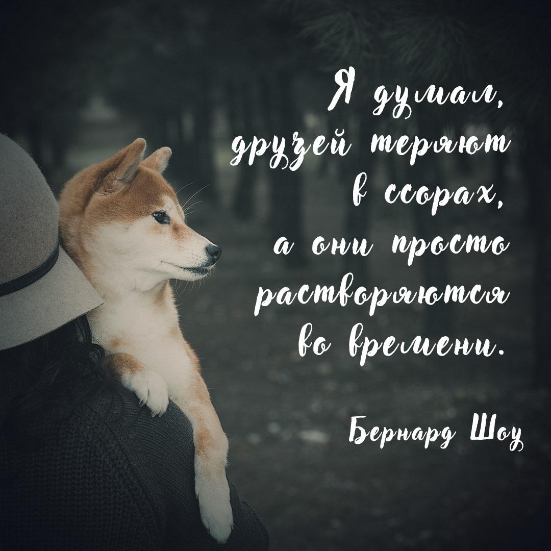 Белая надпись на фоне фотографии человека с собакой.