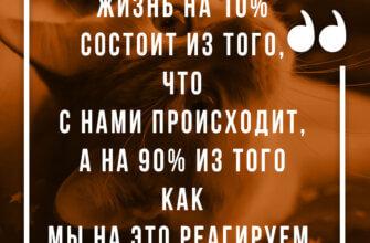 Фото с надписью - цитаты со смыслом о жизни на коричневом фоне с кошкой.