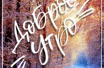 Картинка с текстом доброе утро - зимняя дорога с лиственном лесу