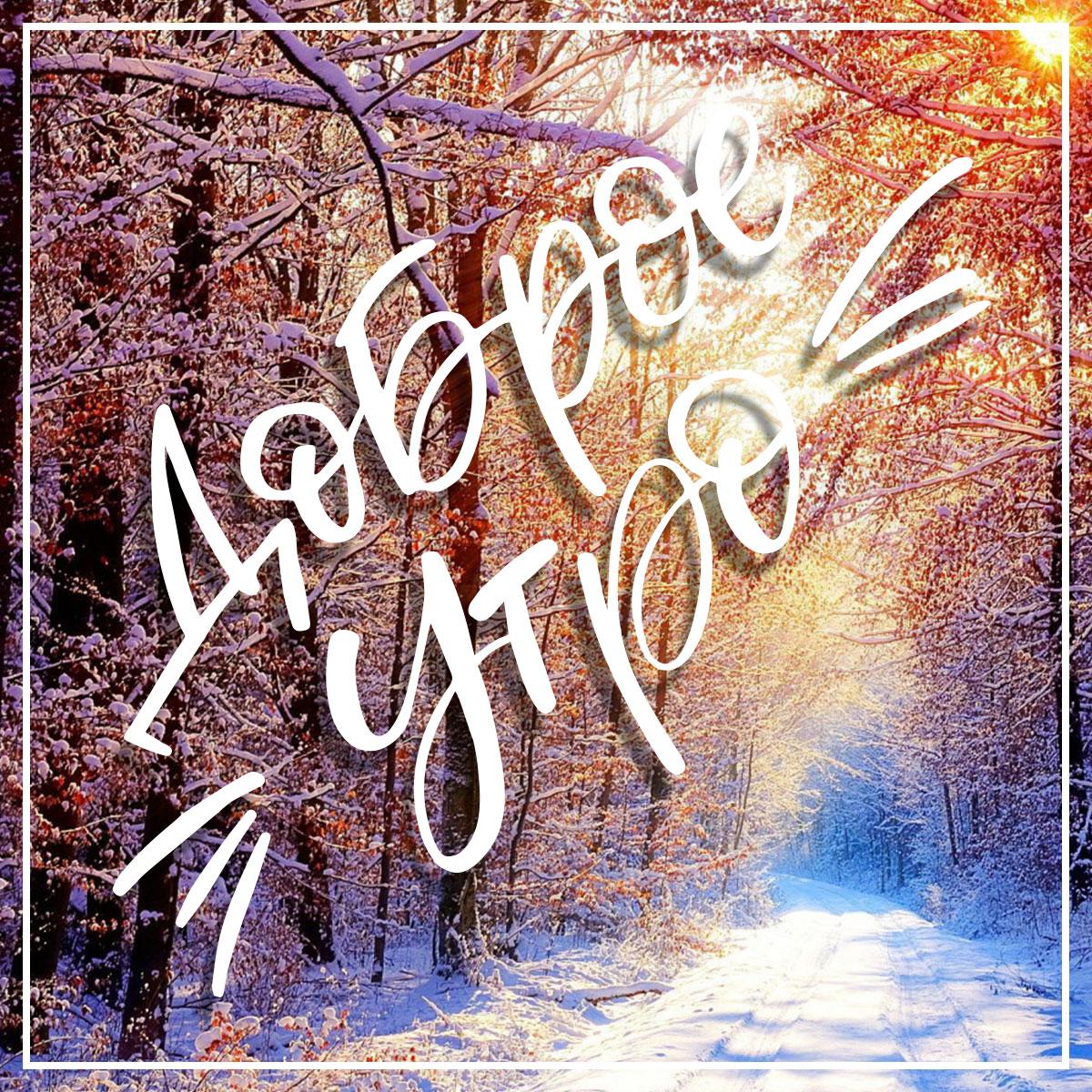 Зимняя дорога с лиственном лесу с надписью доброе утро!