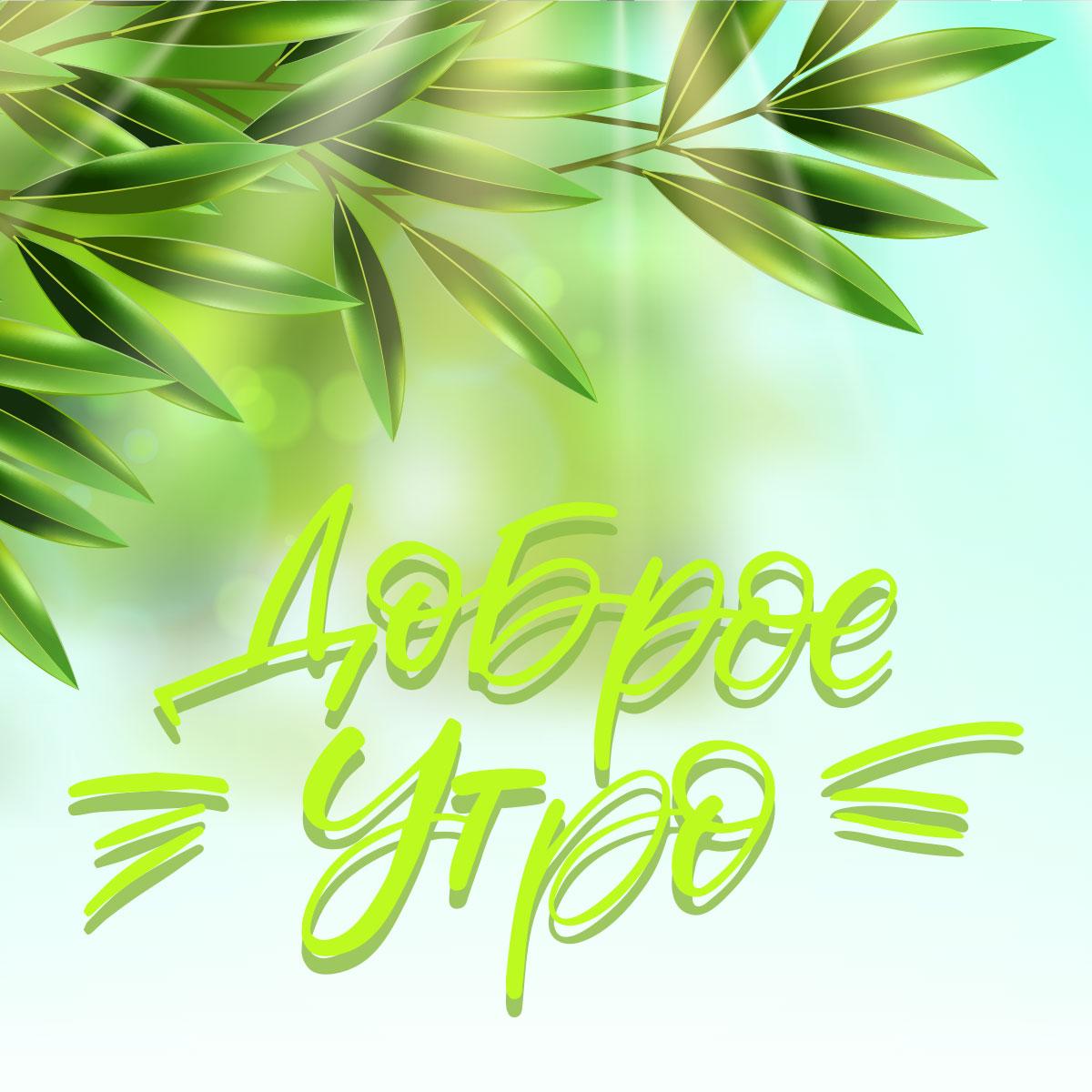 Весенняя картинка с каллиграфическим текстом доброе утро и зелёные листья.