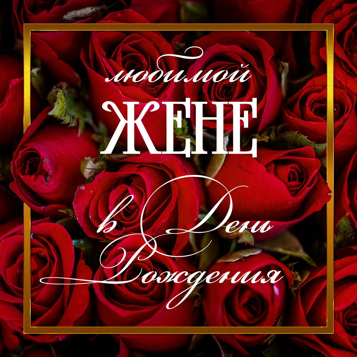 Фото с надписью любимой жене в день рождения с красными чайными розами.