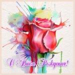 Натюрморт акварелью: роза красным цветом.