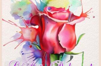 Картинка с надписью с днём рождения с бутоном красной розы на разноцветном фоне с пятнами акварельной краски.