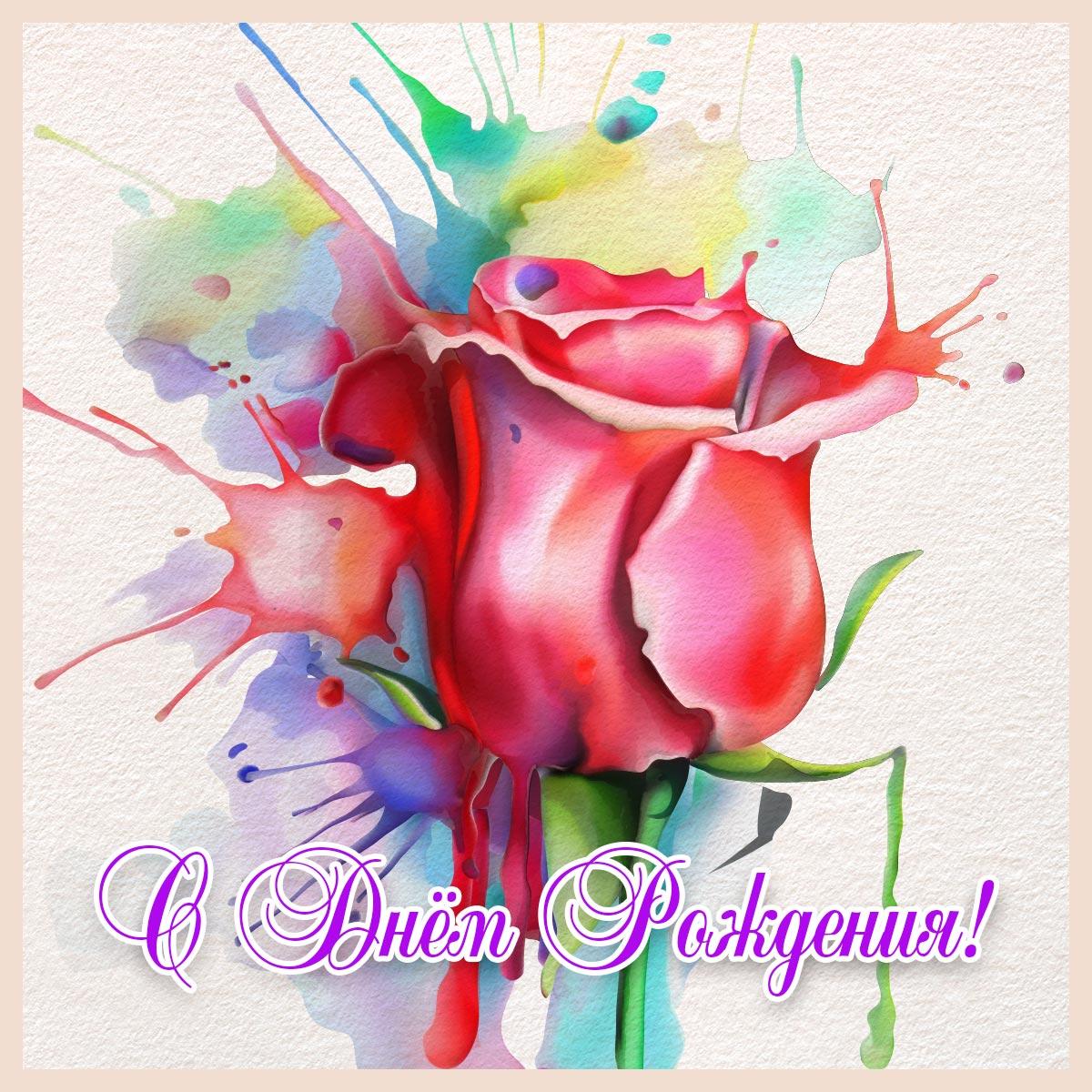 Бутон красной розы на разноцветном фоне с надписью с днём рождения!