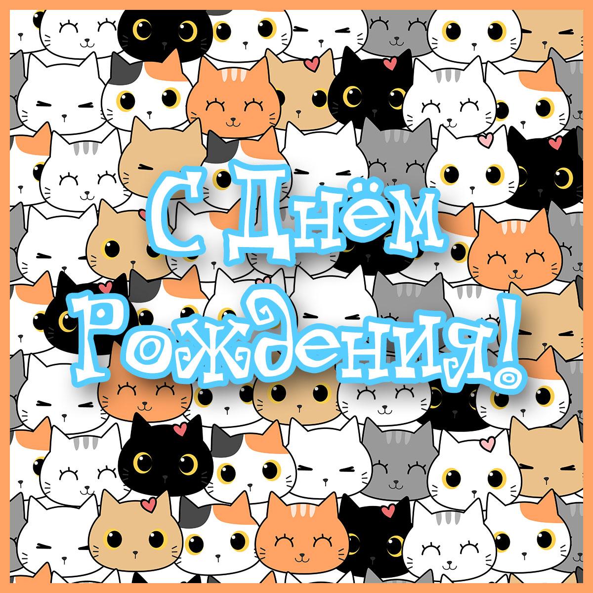Картинка с надписью с днем рождения на фоне множества кошачьх мордочек оранжевого, черного и белого цвета.