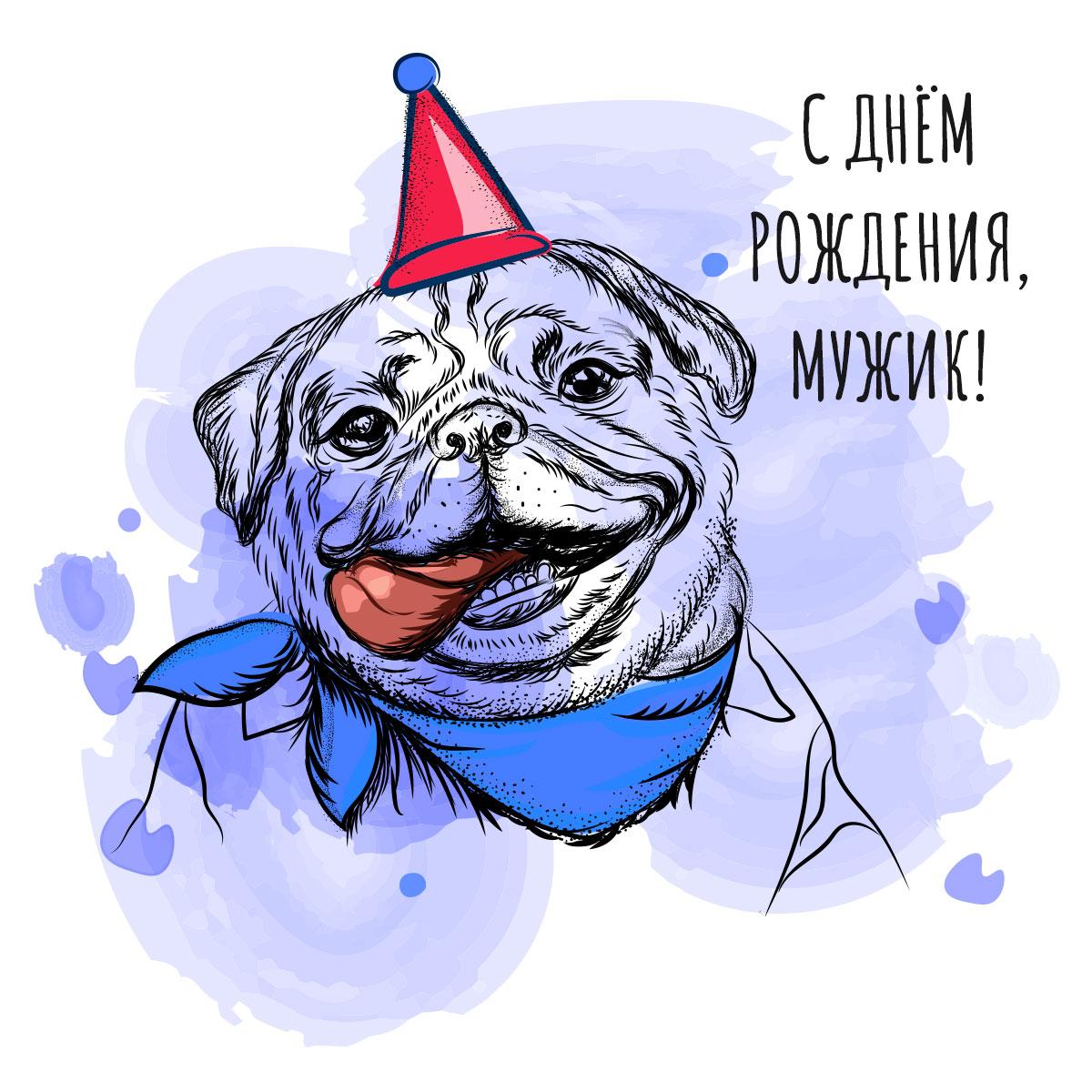 Картинка с днем рождения мужик с рисунком мопса в синем платке на шее и красной шляпе для вечеринок.
