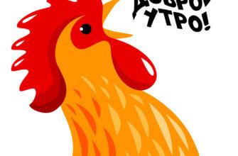 Картинка с надписью доброе утро с рисунком кукарекающего рыжего петуха.