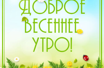 Картинка с надписью доброе весеннее утро с жёлтыми и белыми ромашками на зелёном поле с божьими коровками.