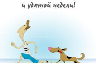 Картинка с надписью доброе утро понедельника и удачной недели с бегущими мужчиной в спортивных штанах до колена и пятнистой собакой.