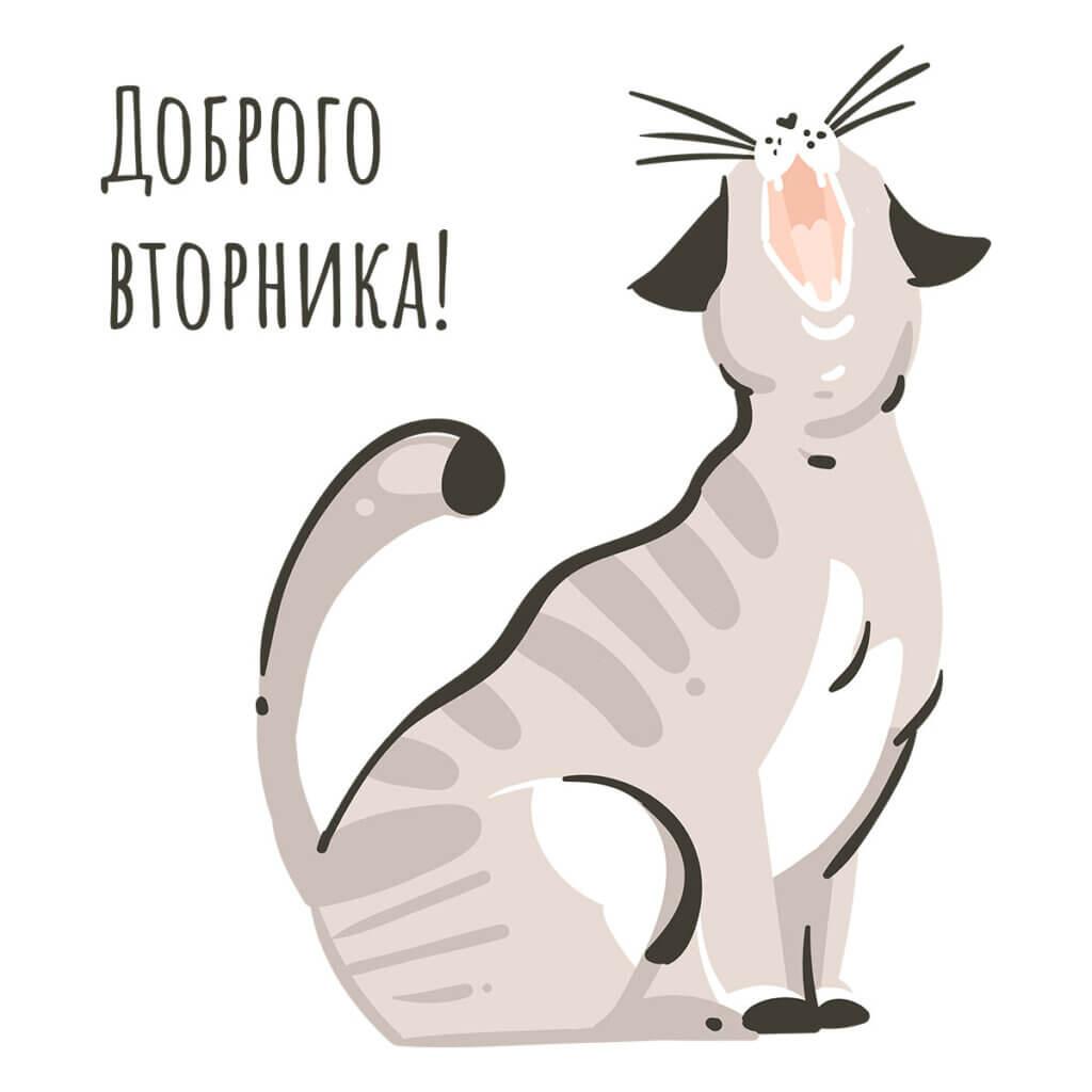 Картинка с надписью доброго вторника с рисунком зевающей кошки.
