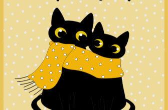 Картинка с котиками доброе утро на жёлтом фоне в горошек.