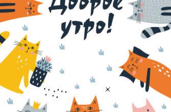 Картинка с текстом доброе утро с кошками оранжевого, жёлтого и серого цвета.