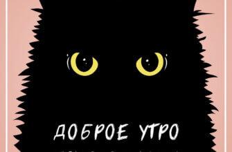 Картинка с надписью доброе утро понедельника с рисунком головы чёрного кота с жёлтыми глазами в квадратной рамке.